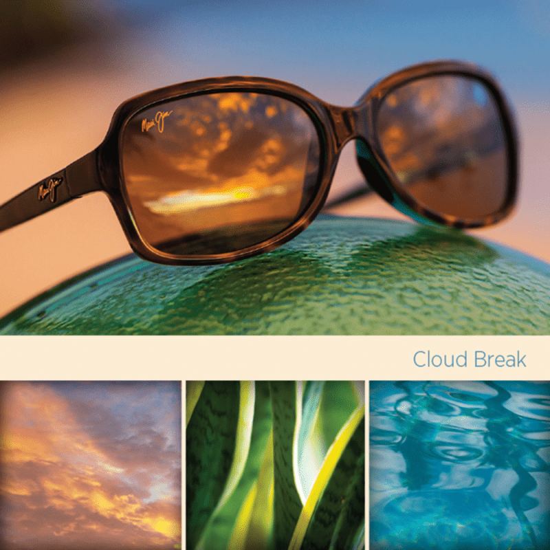 Image with sunglasses, sky, leaves and water